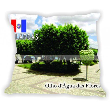 alagoas-gabaritoalagoas-olhodaguadasflores