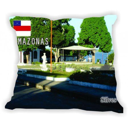 amazonas-gabaritoamazonas-silves