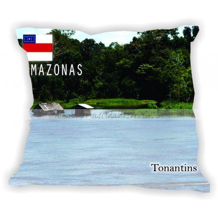 amazonas-gabaritoamazonas-tonantins