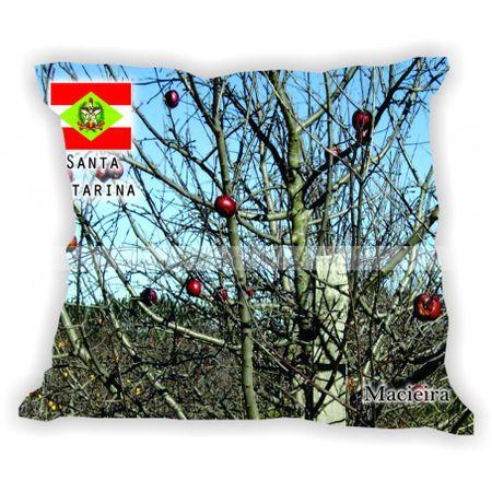 santacatarina-gabaritosantacatarina-macieira