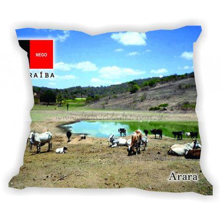 paraiba-001a100-gabaritoparaiba-arara