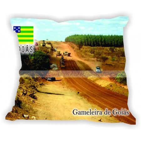 goias-gabaritogois-gameleiradegoias