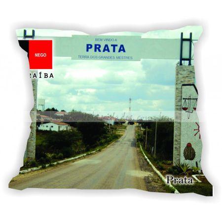 paraiba-101a223-gabaritoparaiba-prata