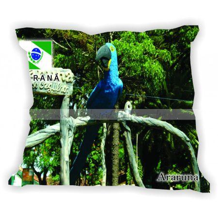 parana-001-a-100-gabaritoparana-araruna