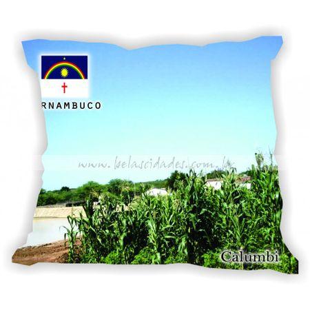 pernambuco-001a100-gabaritopernambuco-calumbi
