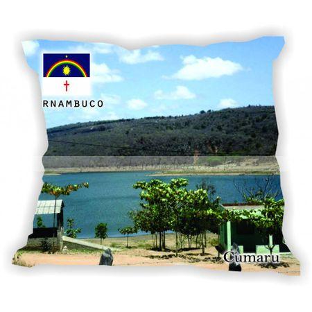 pernambuco-001a100-gabaritopernambuco-cumaru