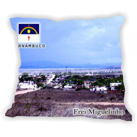 pernambuco-001a100-gabaritopernambuco-freimiguelinho
