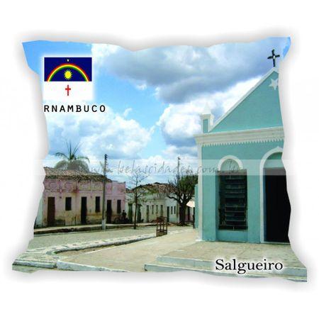 pernambuco-101a185-gabaritopernambuco-salgueiro