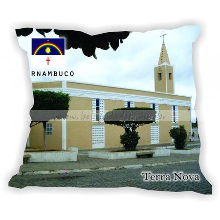 pernambuco-101a185-gabaritopernambuco-terranova