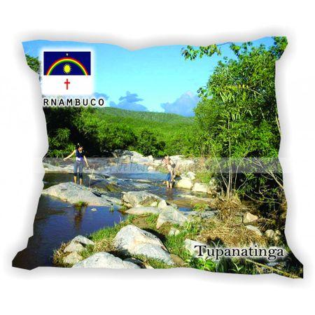 pernambuco-101a185-gabaritopernambuco-tupanatinga
