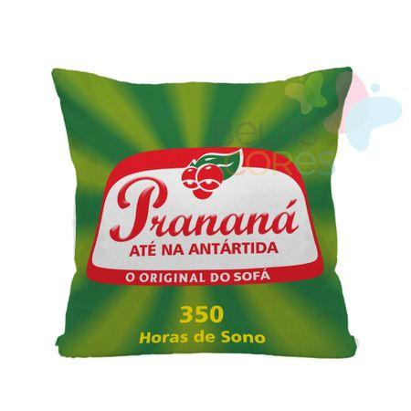 Almofada-Divertida-Pranana