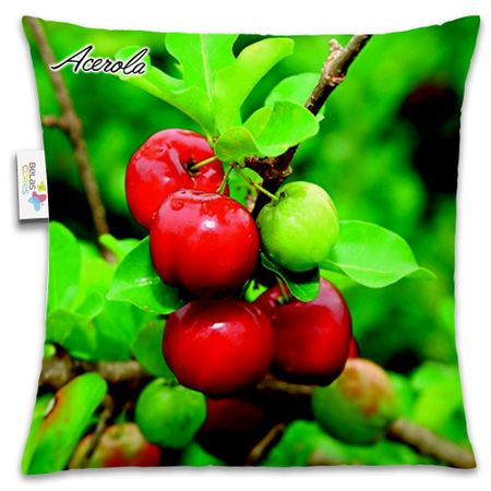 Almofada-Fruta-30x30-Acerola