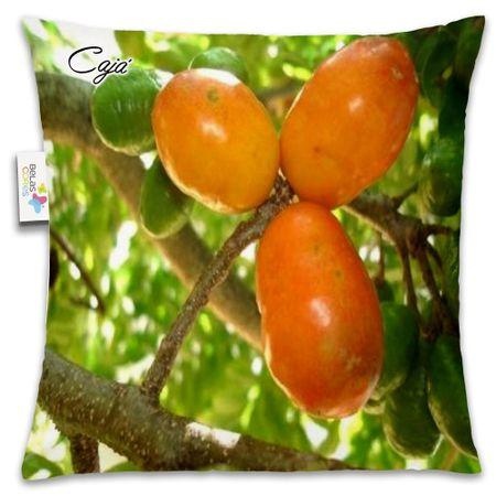 Almofada-Fruta-30x30-Caja