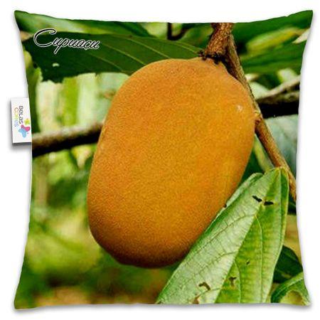 Almofada-Fruta-30x30-Cupuacu