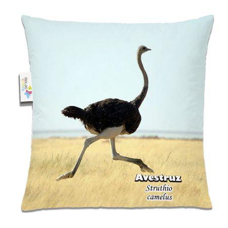 Almofada-Animal-30x30-Avestruz