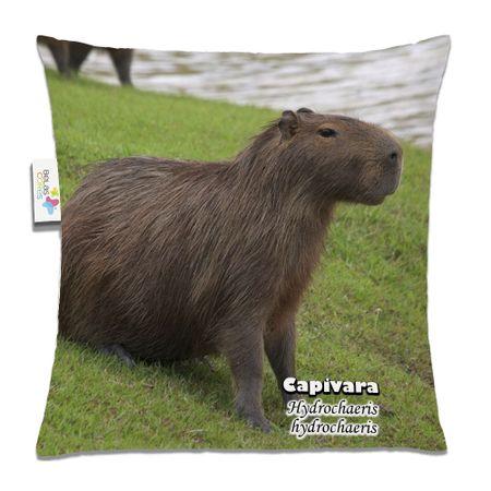 Almofada-Animal-30x30-Capivara