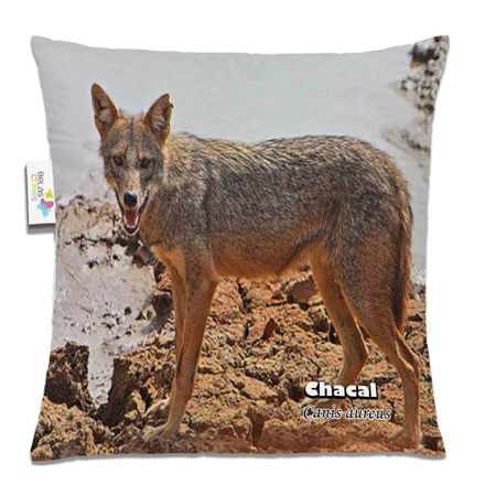 Almofada-Animal-30x30-Chacal
