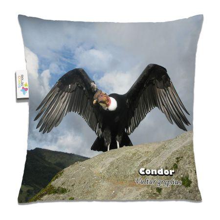 Almofada-Animal-30x30-Condor