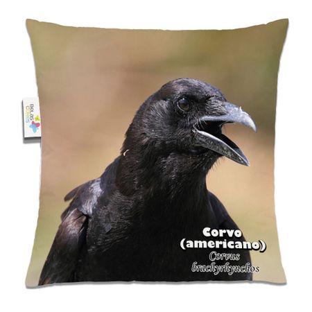 Almofada-Animal-30x30-Corvo-Americano