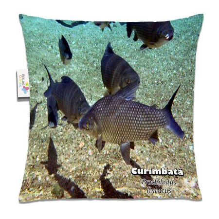 Almofada-Animal-30x30-Curimbata
