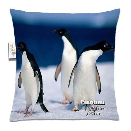 Almofada-Animal-30x30-Pinguim