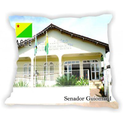 acre-gabaritoacre-senadorguiomard