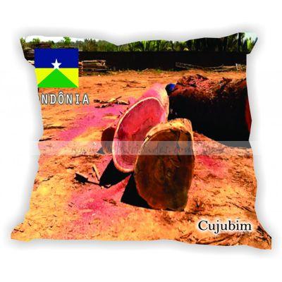 rondonia-gabaritorondonia-cujubim
