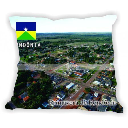 rondonia-gabaritorondonia-primaveraderondonia