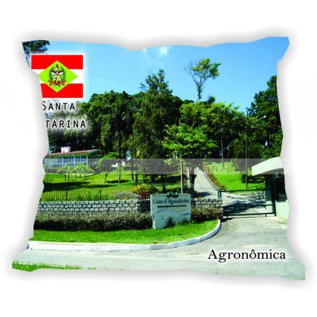 santacatarina-gabaritosantacatarina-agronomica