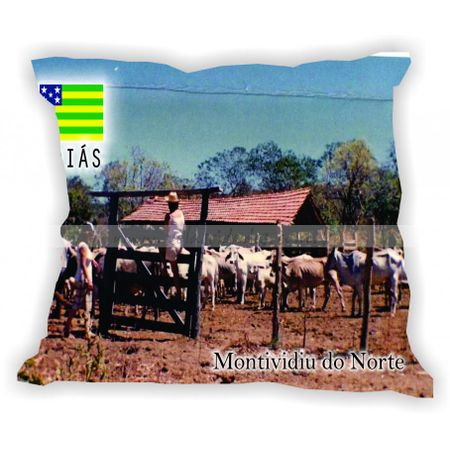 goias-101a200-gabaritogois-montividiudonorte
