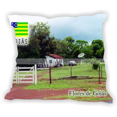goias-gabaritogois-floresdegoias