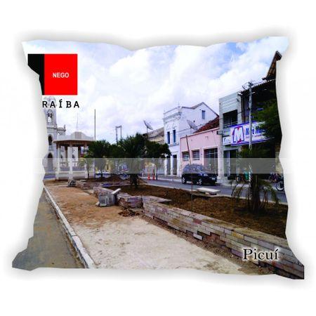 paraiba-101a223-gabaritoparaiba-picui