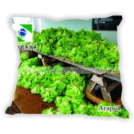 parana-001-a-100-gabaritoparana-arapua