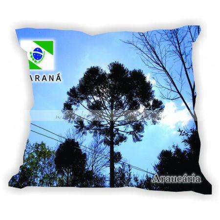parana-001-a-100-gabaritoparana-araucaria