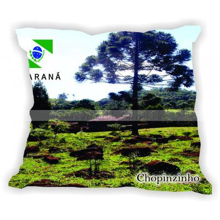 parana-001-a-100-gabaritoparana-chopinzinho