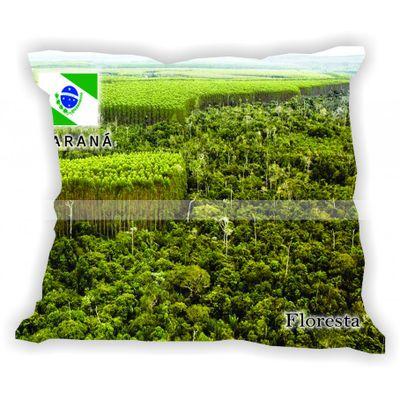 parana-101-a-200-gabaritoparana-floresta