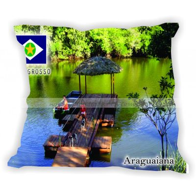 matogrosso-gabaritomatogrosso-araguaiana
