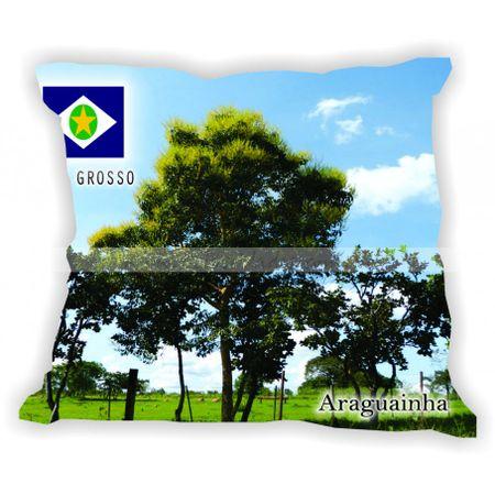 matogrosso-gabaritomatogrosso-araguainha