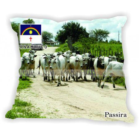 pernambuco-101a185-gabaritopernambuco-passira