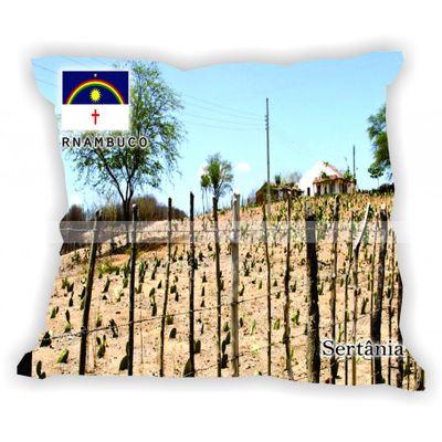 pernambuco-101a185-gabaritopernambuco-sertania