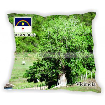 pernambuco-101a185-gabaritopernambuco-vicencia