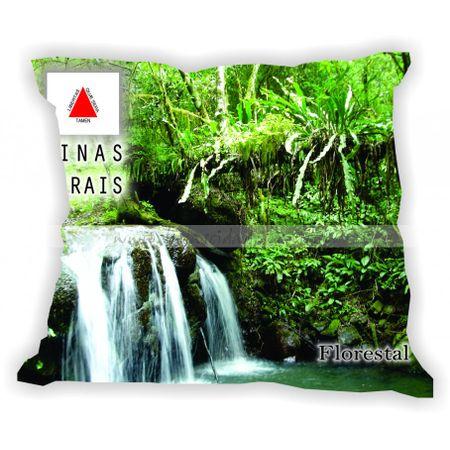 minasgerais-201a300-gabaritominasgerais-florestal