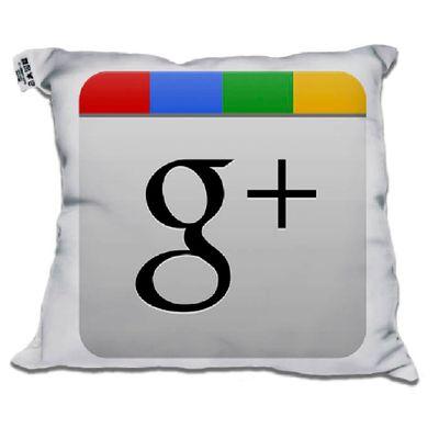almofada-redes-sociais-30x30-google-mais-1-unidade