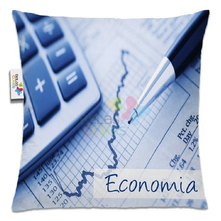 almofada-profissao-30x30-economia-1unidade