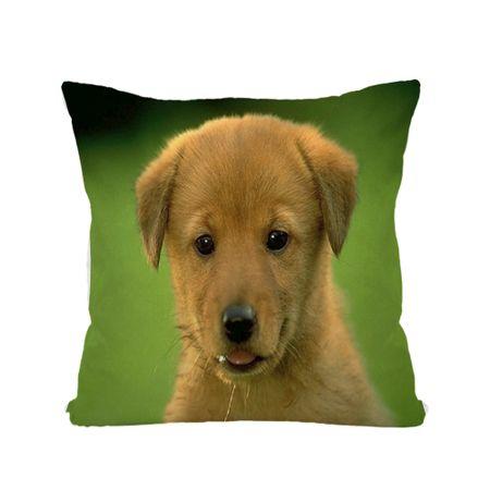 Almofada-de-Animais-30x30-Cachorro