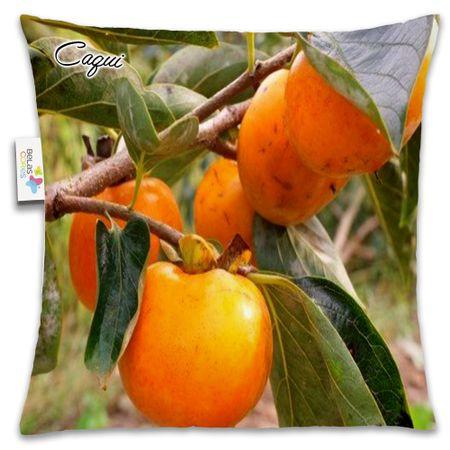 Almofada-Fruta-30x30-Caqui