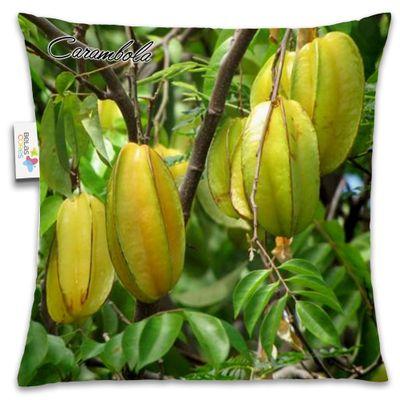 Almofada-Fruta-30x30-Carambola