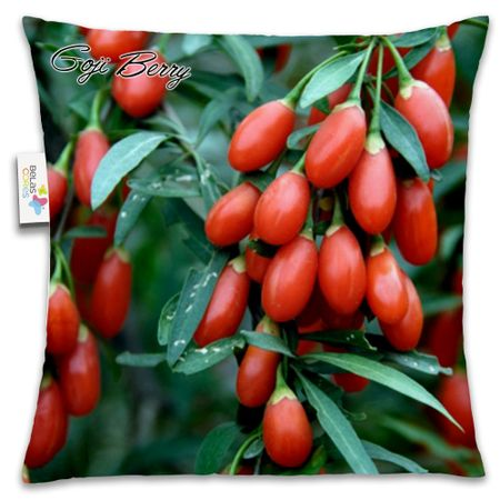 Almofada-Fruta-30x30-Goji-Barry