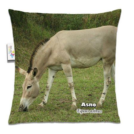 Almofada-Animal-30x30-Asno