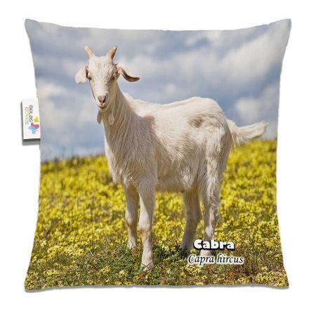 Almofada-Animal-30x30-Cabra